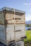 Front View de la colmena de la abeja Imágenes de archivo libres de regalías