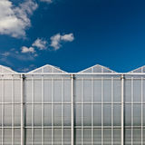 Front view of a dutch glass greenhouse Royalty Free Stock Image