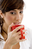 Front view of female accountant drinking coffee Royalty Free Stock Photography