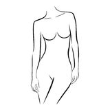 Front view female stylized half body contour Stock Photos