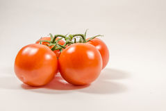 Front view of four tomato on the vine Royalty Free Stock Photos
