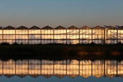 Front view of a greenhouse during sunset Royalty Free Stock Photography