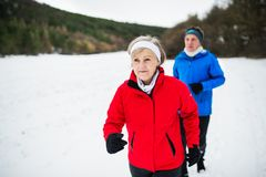 A front view of senior couple jogging in snowy winter nature. A front view of happy senior couple jogging in snowy winter nature royalty free stock photography