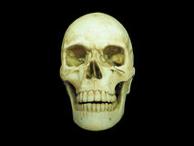 Front view of human skull on isolated black background Royalty Free Stock Photo