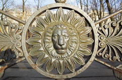 Front view of lion head in round frame. Decoration Royalty Free Stock Photo
