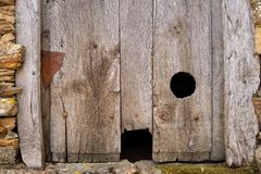 Old wooden door with two holes for cats royalty free stock image