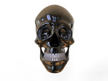 Front view metallic skull Stock Photography