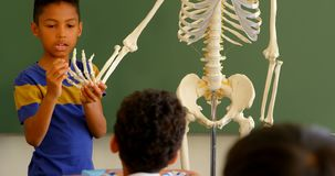 Mixed-race schoolboy explaining skeleton model in classroom at school 4k
