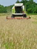 Front view of modern combine harvester during harvesting Stock Image