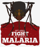 Front View of Mosquito over Red Sign for Malaria Day, Vector Illustration. Cartoon poster with realistic front view of mosquito in cartoon style over red sign Royalty Free Stock Photos