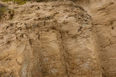 Front view of the natural background of yellow limestone with the bumpy surface with dark hollows that are smoothed by the sea wav Royalty Free Stock Photo