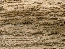 Front view of the natural background of yellow limestone with the bumpy surface with dark hollows that are smoothed by the sea wav Royalty Free Stock Photography