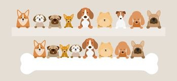 Group of Dog Breeds Holding Bone and Banner Stock Photography
