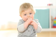 Portrait of a kid biting his fingers looking at you Royalty Free Stock Photo
