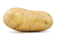 Front view of potato on white background. Royalty Free Stock Photography