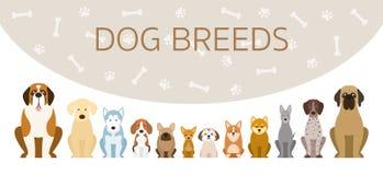 Group of Dog Breeds Illustration Stock Photography