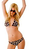Front view of sensuous model in bikini. On an isolated background Royalty Free Stock Images