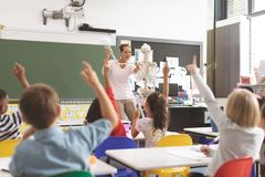 Teacher asking about human skeleton in classroom while schoolkids raising hand. Front view of teacher asking about human skeleton in classroom while school kids royalty free stock images