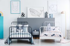 Front view of two simple beds, one white and the other black, in. A small contemporary bedroom interior for children. Posters of a rabbit, whale and elephant on stock image