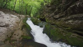 Front view on waterfall on small mountain river flowing in stony riverbed covered with moss. stock footage