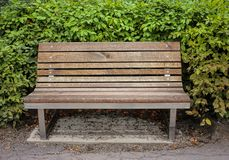 Front view of wooden bench on sidewalk in park, sunny day with bushes in background stock photos