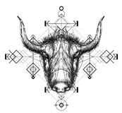 Front view of yak head doodle Stock Images