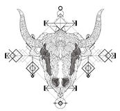 Front view of yak head doodle Royalty Free Stock Photos
