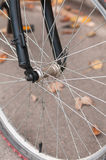 Front wheel of bicycle Royalty Free Stock Photo