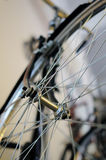Front wheel of bicycle Royalty Free Stock Image
