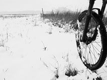 The front wheel of mountain bike in the first snow. Royalty Free Stock Photos