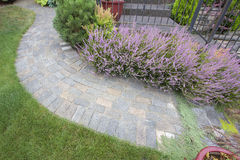 Front Yard Garden Curve Paver Path Top View Royalty Free Stock Photos