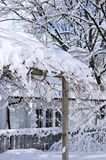 Front yard of a house in winter. Front yard of a house covered with snow in winter Toronto Stock Image