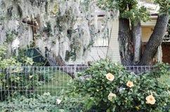 Front Yard Landscaping fotos de archivo