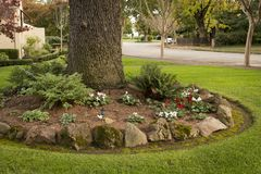 Free Front Yard Landscaping Idea Royalty Free Stock Photo - 107920255