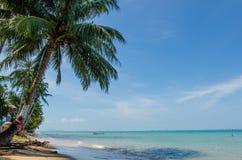 Frontage пляжа с кокосовыми пальмами и линией солнечности стоковые изображения