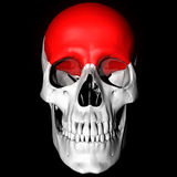 Frontal Bone. Of Skull Highlighted Red Royalty Free Stock Image