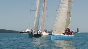 Two sailboats sailing the vast ocean. A frontal shot of two sailboats coming through. A yacht in the background is seen stock footage