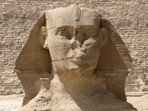Frontal Sphinx detail Stock Image