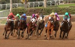 Frontale het Rennen Actie Royalty-vrije Stock Afbeeldingen