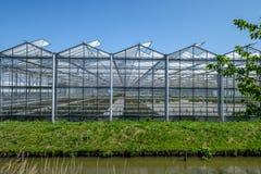 Frontansicht eines Gewächshauses Westland in den Niederlanden Lizenzfreie Stockfotos