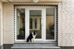 Frontdoor zdjęcie royalty free
