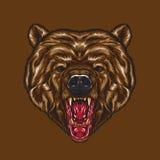 Fronte arrabbiato dell'orso royalty illustrazione gratis