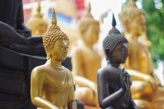 Fronte dei tanti statua di Buddha Immagine Stock
