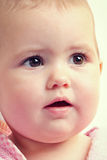 Fronte del bambino del primo piano Fotografie Stock