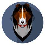Fronte del cane delle collie - illustrazione di vettore Fotografia Stock Libera da Diritti