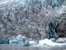 Fronte del ghiacciaio di Mendenhall Immagini Stock