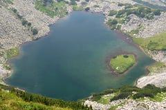 Fronte del lago Immagine Stock