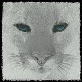 Fronte del leone Fotografia Stock