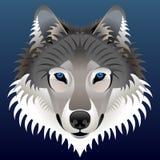 Fronte del lupo realistico Immagini Stock Libere da Diritti
