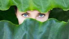 Fronte del ` s della giovane donna circondato dalle foglie tropicali fotografia stock